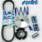 Polini Speed Control Kit